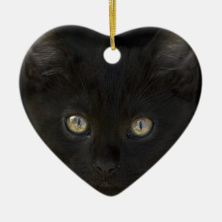 Pitch Black Feral Kitten With Shiny Loving Eyes Ceramic Ornament
