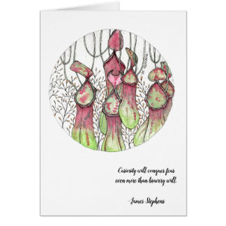 pitcher plant card_quote outside card