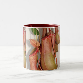 Pitcher Plant Two-Tone Coffee Mug