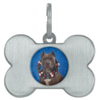 Pitty Christmas Pet Tag
