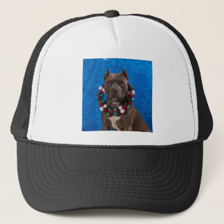 Pitty Christmas Trucker Hat