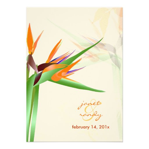 PixDezines Bird of Paradise/diy background color! Personalized Announcements