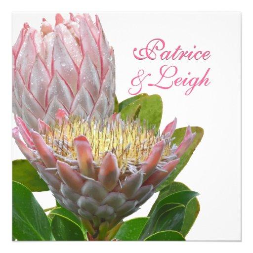 PixDezines fresh maui protea pale pink/diy Personalized Announcements