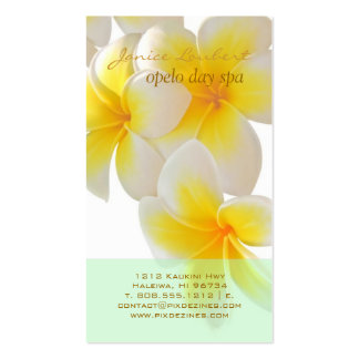 PixDezines Hawaii Plumeria/DIY fonts+color Business Card Template