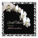 PixDezines orchids/phalaenopsis