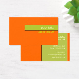 PixDezines trendy retro colors business cards