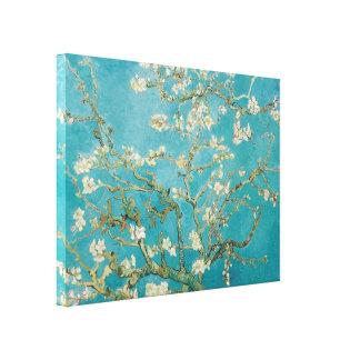 PixDezines van gogh almond blossoms Gallery Wrap Canvas
