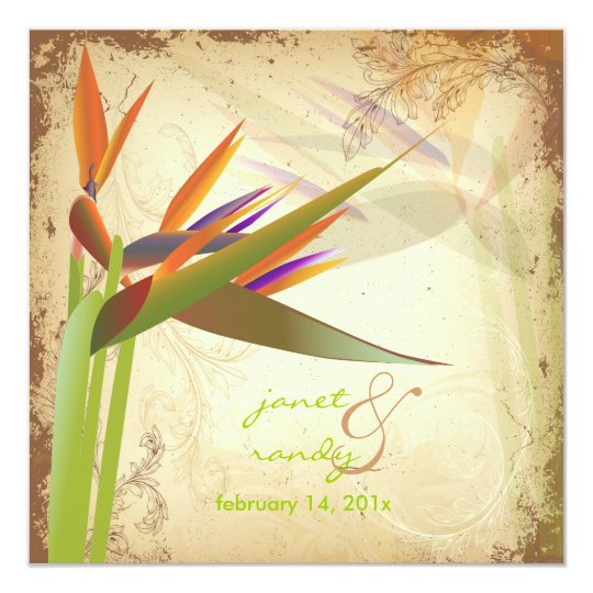 PixDezines VINTAGE BIRD OF PARADISE Card