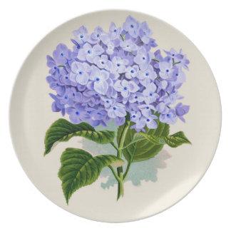PixDezines vintage hydrangea, blue Plate