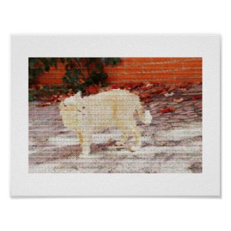 Pixeled Cat Poster