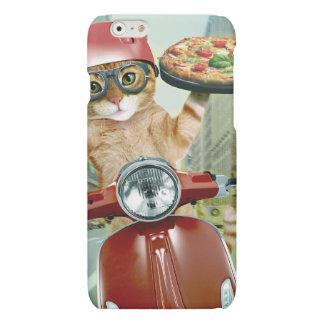 pizza cat - cat - pizza delivery
