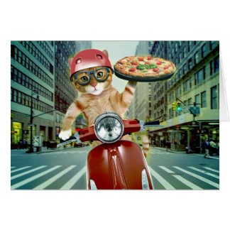pizza cat - cat - pizza delivery card