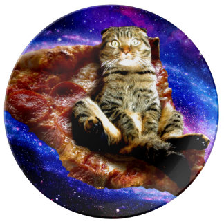 pizza cat - crazy cat - cats in space plate