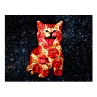 pizza cat - kitty - pussycat postcard