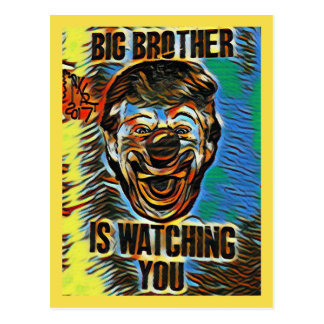 PL#958584 Big Brother is Watching Postcard