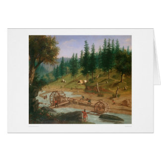 Placer Mining at Foster's Bar, California (1331A) Card