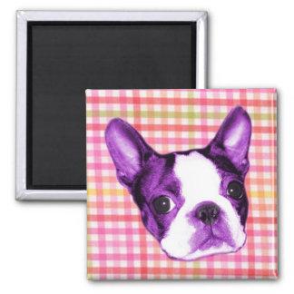 Plaid Boston Terrier Puppy Magnet