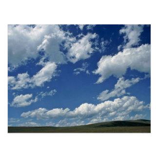 Plain Ground Under Plain Sky Post Cards