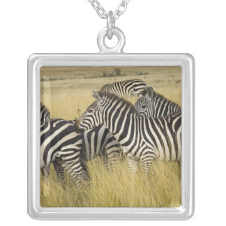Plains Zebra (Equus quagga) in grass, Masai Mara 2 Square Pendant Necklace