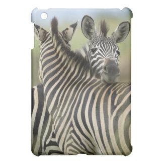 Plains Zebra (Equus quagga) pair, Haga Game iPad Mini Cover