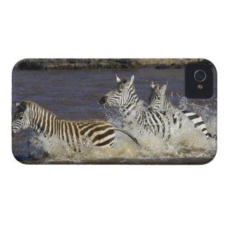 Plains Zebra (Equus quagga) running in water, iPhone 4 Case-Mate Cases