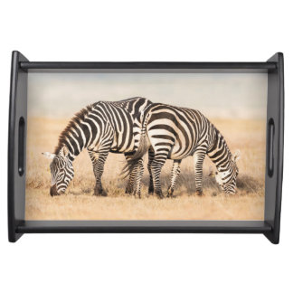 Plains Zebra Or Common Zebra (Equus Quagga) 2 Service Tray