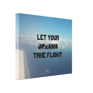 Plane View Canvas Print