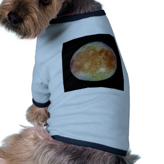 PLANET JUPITER'S MOON EUROPA (solar system) ~ Ringer Dog Shirt