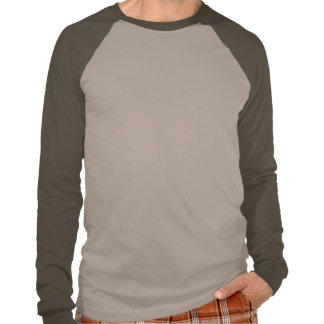 Planetkram Men's Raglan T-shirt