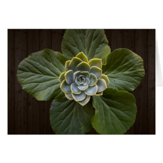 Plant Background Greeting Card