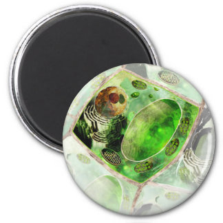 plant cell2 magnet
