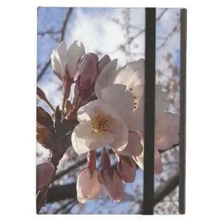 plant-cherryblossoms iPad air case
