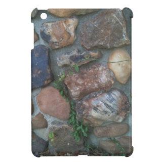 Plant climbing a stone wall iPad mini cases
