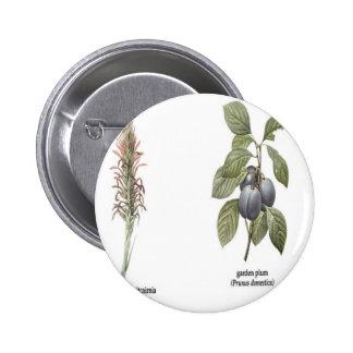 Plant Design Pins