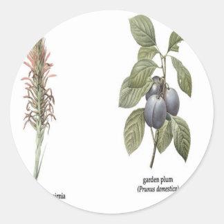 Plant Design Round Sticker