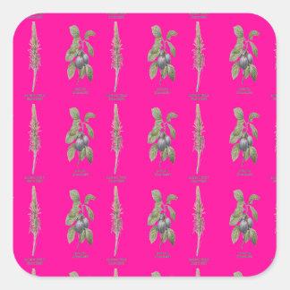 Plant Design Square Sticker