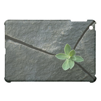 Plant Growing in Cracked Boulder iPad Mini Covers