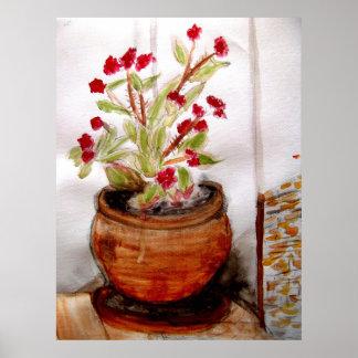 Plant In Terracotta Pot Poster