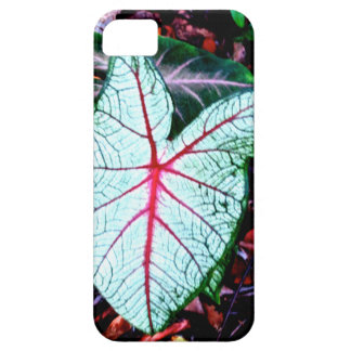 Plant Leaf iPhone 5 Covers