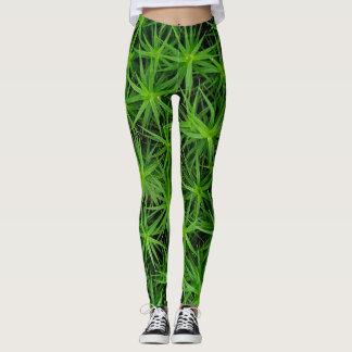 plant leaves leggings