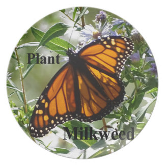 Plant Milkweed Plate