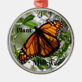 Plant Milkweed Silver-Colored Round Decoration