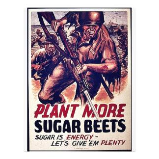 Plant More Sugar Beets Flyers