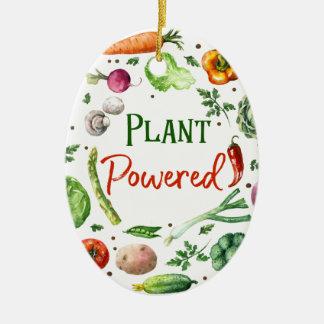Plant-Powered Designs Ceramic Ornament
