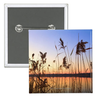 Plant Silhouette by Lakeside sunset 15 Cm Square Badge
