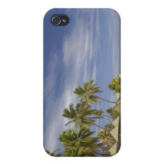 Plantation Island Resort, Malolo Lailai Island 4 iPhone 4 Covers