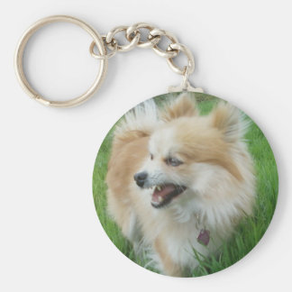 PLANTDOG KEY RING