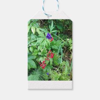 Plants at Pioneer Falls Butte Alaska Gift Tags