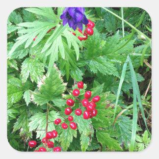 Plants at Pioneer Falls Butte Alaska Square Sticker