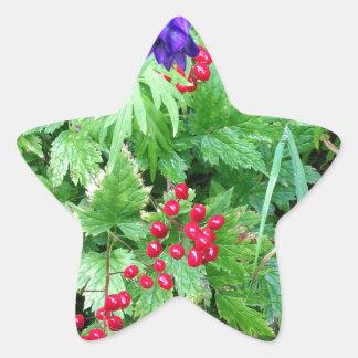Plants at Pioneer Falls Butte Alaska Star Sticker